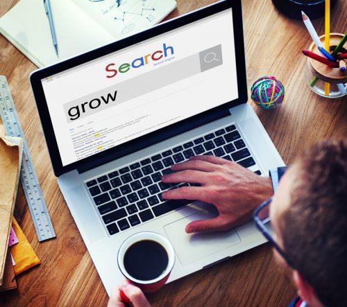 Bigstock Grow Strategy Success Growth I 132219590 E1508250107116